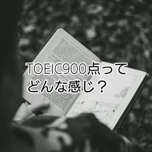 僕がTOEIC900点を取って感じている事、2つ - 本当に大したことないの?