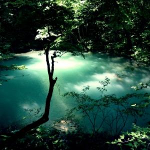 【第165話】側を通ると必ず死ぬ池には恐ろしい悪魔がいた!その池に潜む悪魔はオカルト教団に呼び出されたが制御不能となってSNSを使い多数の人を呼び寄せているという恐怖の存在になっていた