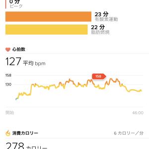 Run482: BB2 MTGX