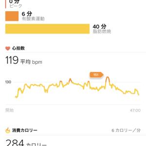 Run485: BB2 MTGX