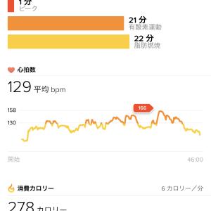 Run498: BB2 MTGX