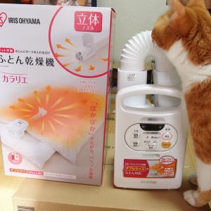 アイリスオーヤマ ふとん乾燥機 カラリエFK-C2 レビュー マットなしは手軽ですごく便利!