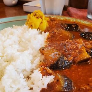 バンコクから5年ぶりに帰任した自主隔離中の弟にうなぎ弁当を差し入れた帰りに、 #新橋 「 #ザ・カリ 」で #スパイシー な「 #ナスと挽肉のカレー 」