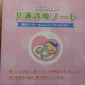 32週妊婦健診