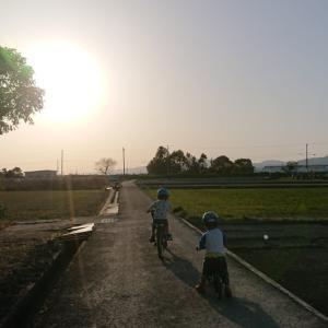 ストライダーと自転車