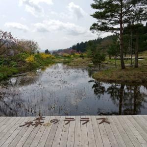 森のテラスに行ってみた。#自然 #東北 #秋田県 #北秋田市 #森のテラス