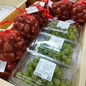 道の駅あににブドウとクリを出しています!売り切れていたら、ごめんなさい!#秋の味覚 #...