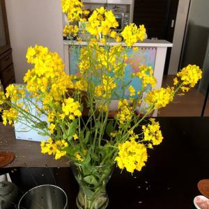 お花大好き
