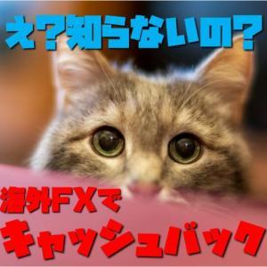 海外FX使うならキャッシュバックサイト利用がオススメ