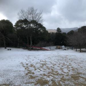 別府市営・堀田温泉で雪見露天風呂