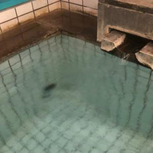鉄輪温泉を散策の夜は別府市堀田温泉のさわやか別府の里。9月10日