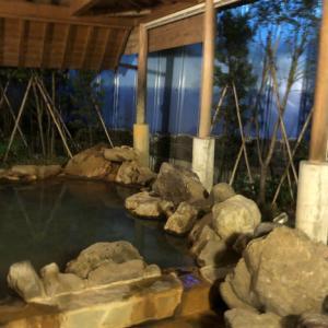 GOTOキャンペーン第7弾ホテルはやしに宿泊~系列ホテルのシーウェーブの温泉へ