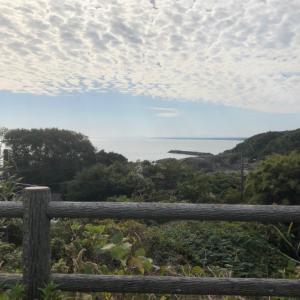 宮崎・青島へ~道の駅日向から高鍋のすき家