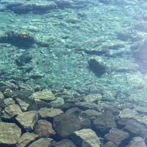朝から海水浴・新上五島町