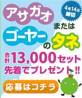【SUUMO】アサガオかゴーヤーの種が先着13,000名に当たる!(~4月14日)