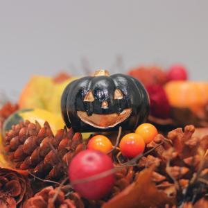 【楽しく過ごすためのスパイス #34】秋冬支度
