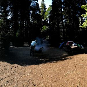 Dogwood Campsite