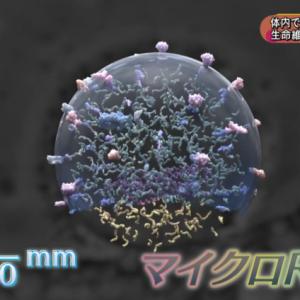 なぜ日本には新型コロナ感染者数が少ないのか?の回答がコレ