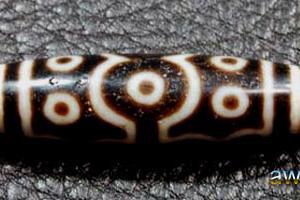 十三眼天珠の単品と野鳥 - ゴシキドリ
