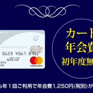 カワチ薬品のクレジットカード 申し込み方法は?使える場所は?