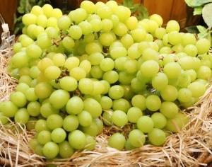 盗んだブドウを売り出して大儲けの韓国