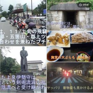 近場でチョイト歴史探訪と秋の果物を仕入れに 埼玉ランチツー 🍇