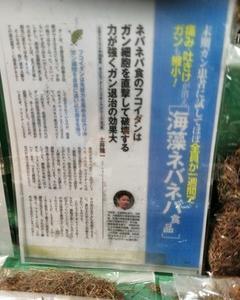 【北海道展】ガンに効くという噂のがごめ昆布【函館産】