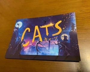 CATS・・・