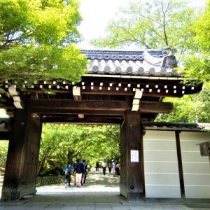 京都旅行の思い出 -世界文化遺産・龍安寺