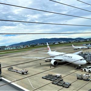大空飛びたい飛行機@伊丹空港
