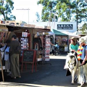 Carara market    カラーラマーケット