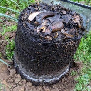 コンポストを取り外し内部の土/堆肥を熟成させる(アイリスオーヤマ製コンポスト EX-101 )