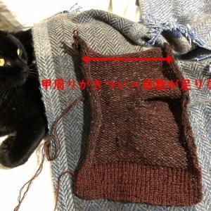 厚地靴下1-6、甲周りが小さくて解いて更に(T.T)、秋の桜の絨毯