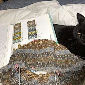 フィンランド毛糸で古典模様、羊模様がやrと、リリー、本は半分ならいいらしい(笑)