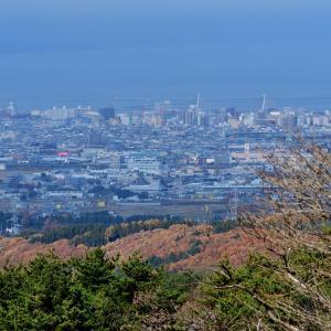 通行止めになる前にと合子沢記念公園 / なんとか撮れたコガラ、ヒガラ、ヤマガラ