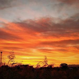 いつものようにカメラを抱えて朝の散歩 / 真っ赤な朝焼けとお月さんとカイツブリ