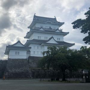 おそらく第10次くらいの小田原征伐(観光)が行われた 今回は小競り合いで終わったが戦果は十分