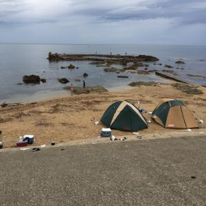 新潟キャンプ‼️
