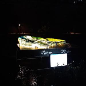 清渓川(청계천) ピッチョロン祭り(빛초롱축제)1