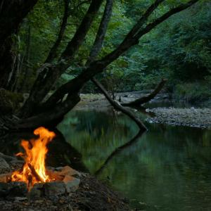 「キャンプファイアと自然の風景3時間」4Kはクオリティが違います。海外の反応