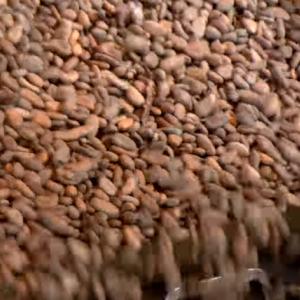 アメリカ式「チョコレートの製造方法」に寄せられたコメントをご紹介! 海外の反応