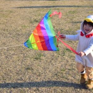 【衝撃】台湾で3歳少女が巨大な凧で空中高く持ち上げられてしまう-人々の必死の救出劇 海外の反応