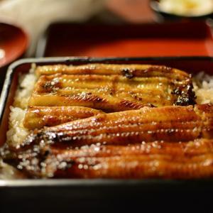 美味しそう♪日本の鰻屋さん~東京・六本木~「驚くほど艶があります」「うなぎって美味しい」海外の反応