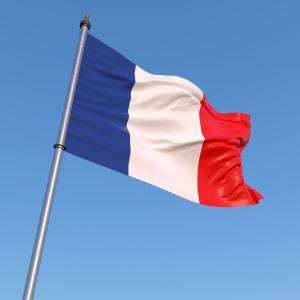 めちゃくちゃなフランスのパレード...旭日旗まで登場した自衛隊「バカなフランス人・・・」「政府は口をつぐんでいる」海外の反応