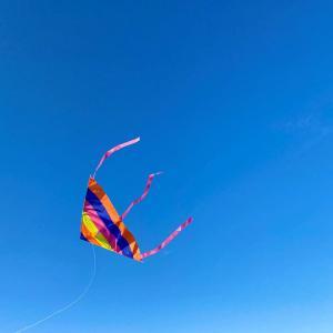 美人な女の子と一緒に凧をあげてみませんか?「凧揚げがとても楽しかったようですね」「あなたはヒーローです」海外の反応