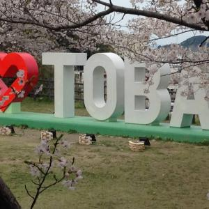 海風が知らせてくれた桜色