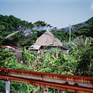 トカラ列島中之島のクワガタムシ類採集、2003年当時、動画編。