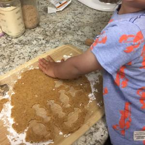 タンパク質たっぷり!ひよこ豆粉でグルテンフリークッキーを作る