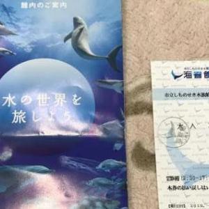 【水族館】海響館 訪問記