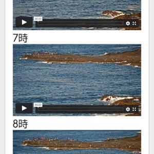 あの釣り場がライブ映像で見られる。釣果情報も満載!「HBC釣り天気&釣果速報」